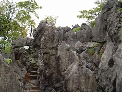 千岛湖石林景区面积20平方公里